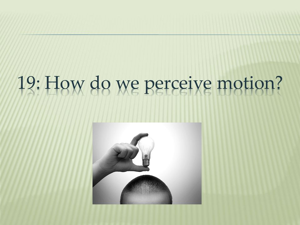 19: How do we perceive motion