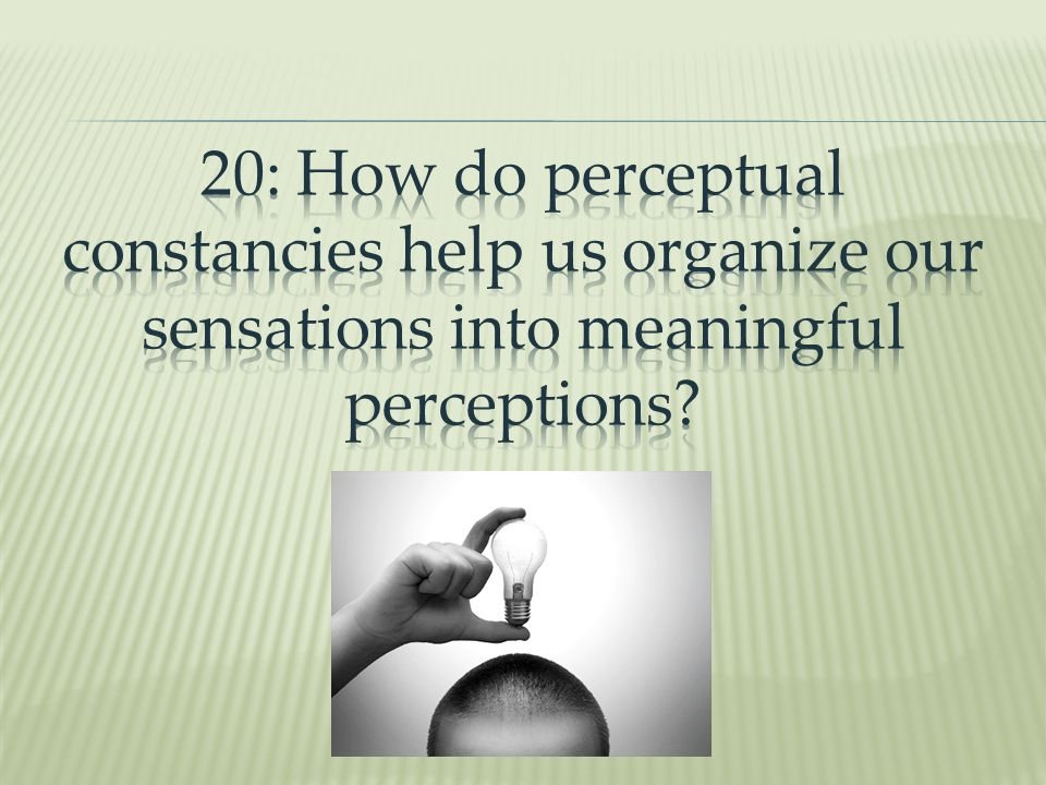 20: How do perceptual constancies help us organize our sensations into meaningful perceptions