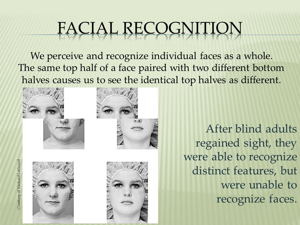 We perceive and recognize individual faces as a whole.