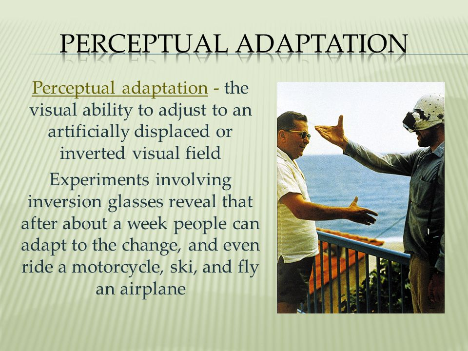 Perceptual Adaptation