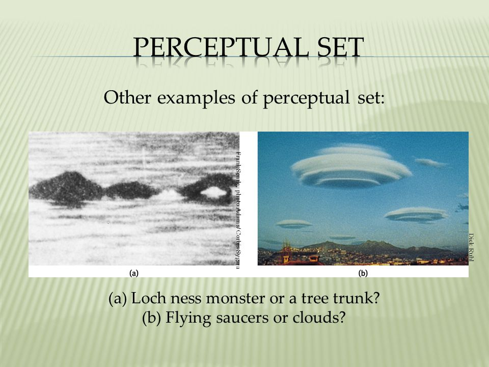 Perceptual Set Other examples of perceptual set: