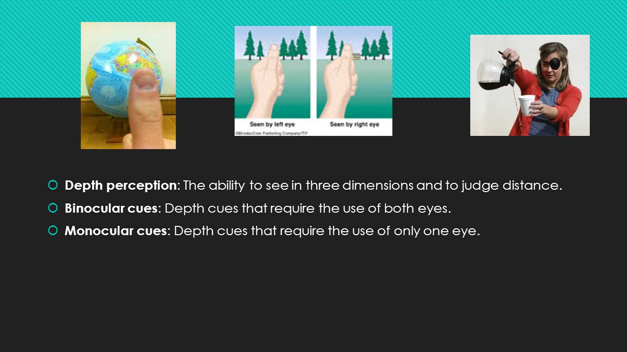 Depth perception: The ability to see in three dimensions and to judge distance.