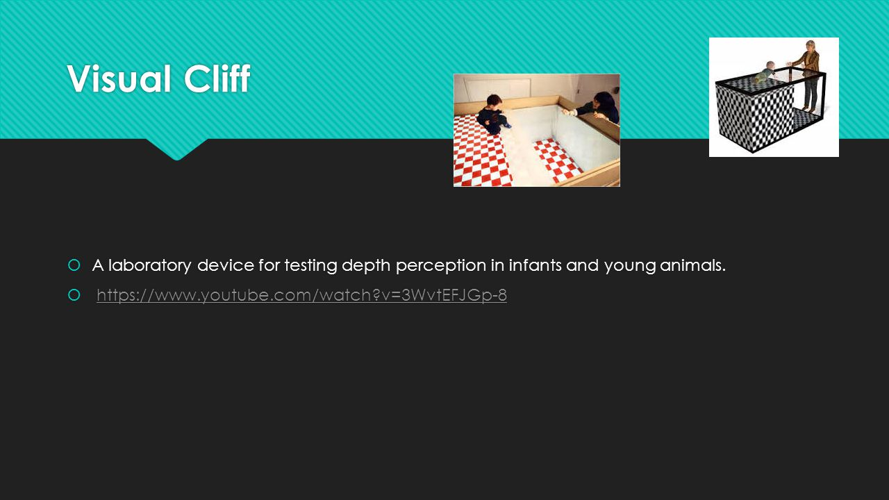 Visual Cliff A laboratory device for testing depth perception in infants and young animals.