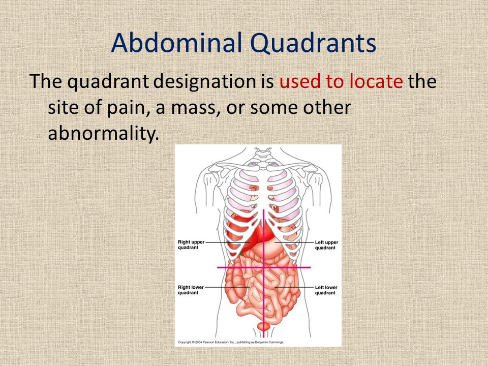 Abdominal Quadrants The quadrant designation is used to locate the site of pain, a mass, or some other abnormality.