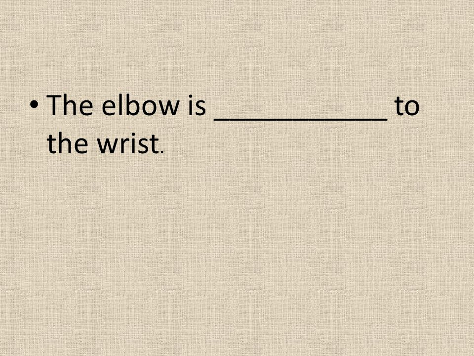The elbow is ___________ to the wrist.