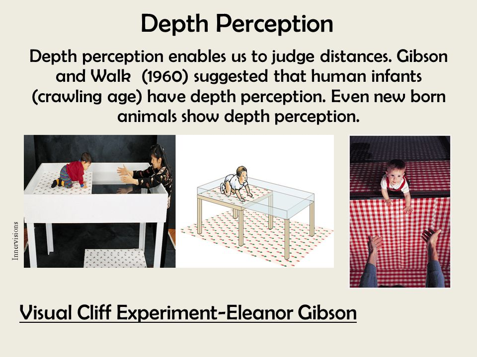 Depth Perception Visual Cliff Experiment-Eleanor Gibson