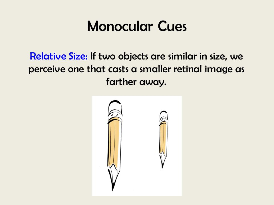 Monocular Cues Relative Size: If two objects are similar in size, we perceive one that casts a smaller retinal image as farther away.