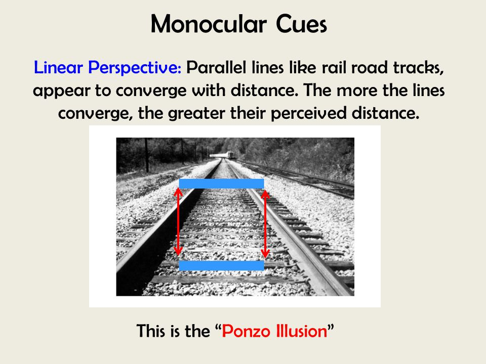 This is the Ponzo Illusion