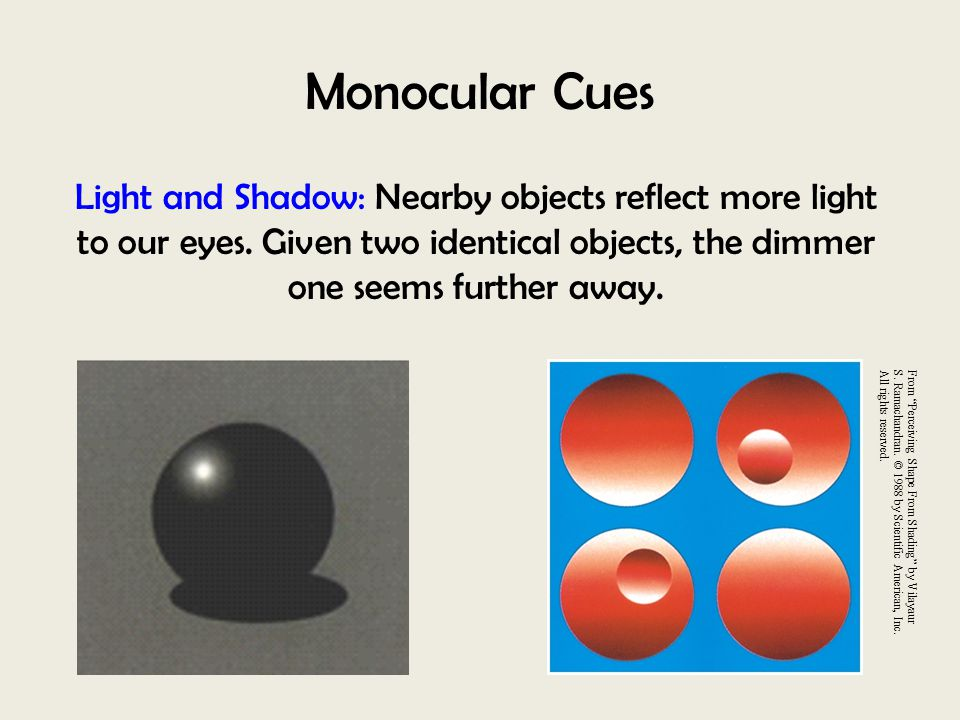 Monocular Cues Light and Shadow: Nearby objects reflect more light to our eyes. Given two identical objects, the dimmer one seems further away.