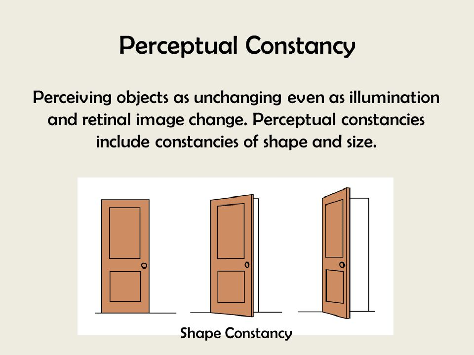 Perceptual Constancy