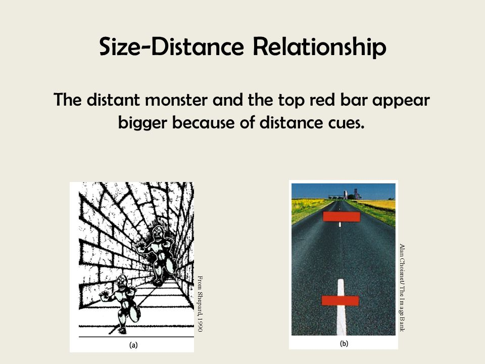 size distance relationship psychology quiz