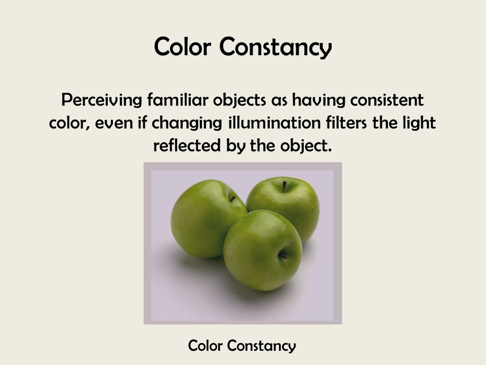 Color Constancy Perceiving familiar objects as having consistent color, even if changing illumination filters the light reflected by the object.