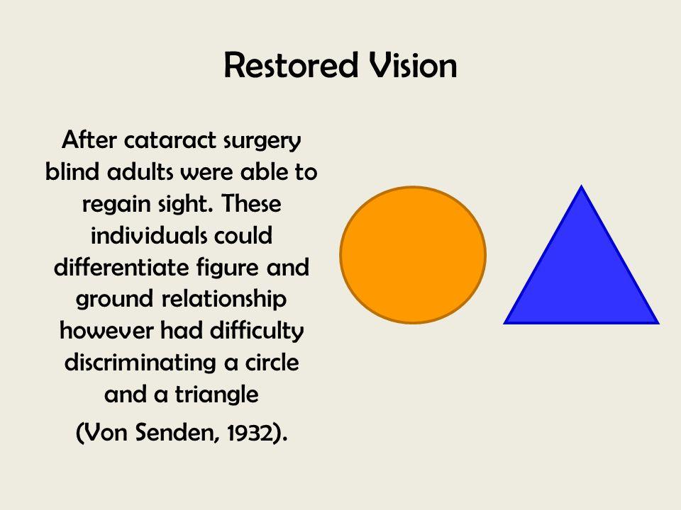 Restored Vision