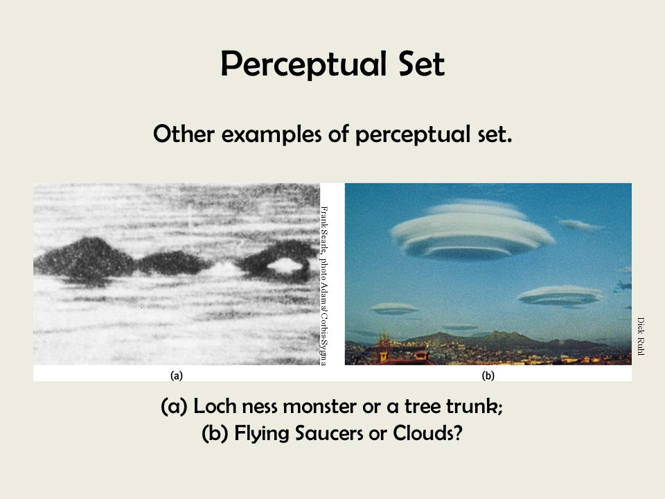 Perceptual Set Other examples of perceptual set.