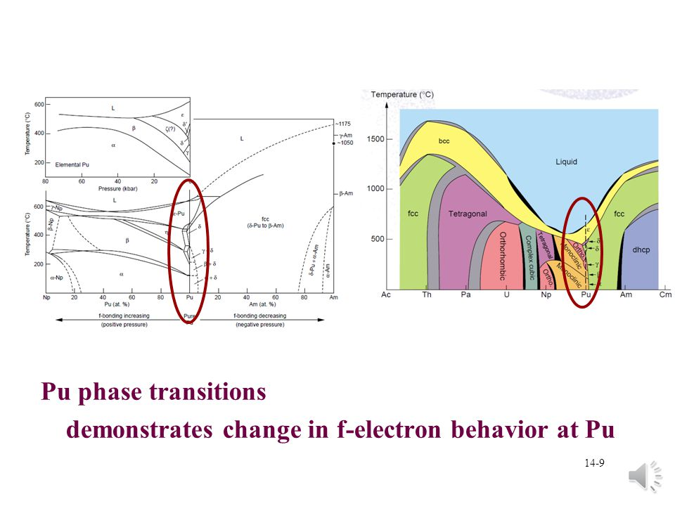 Pu phase transitions demonstrates change in f-electron behavior at Pu