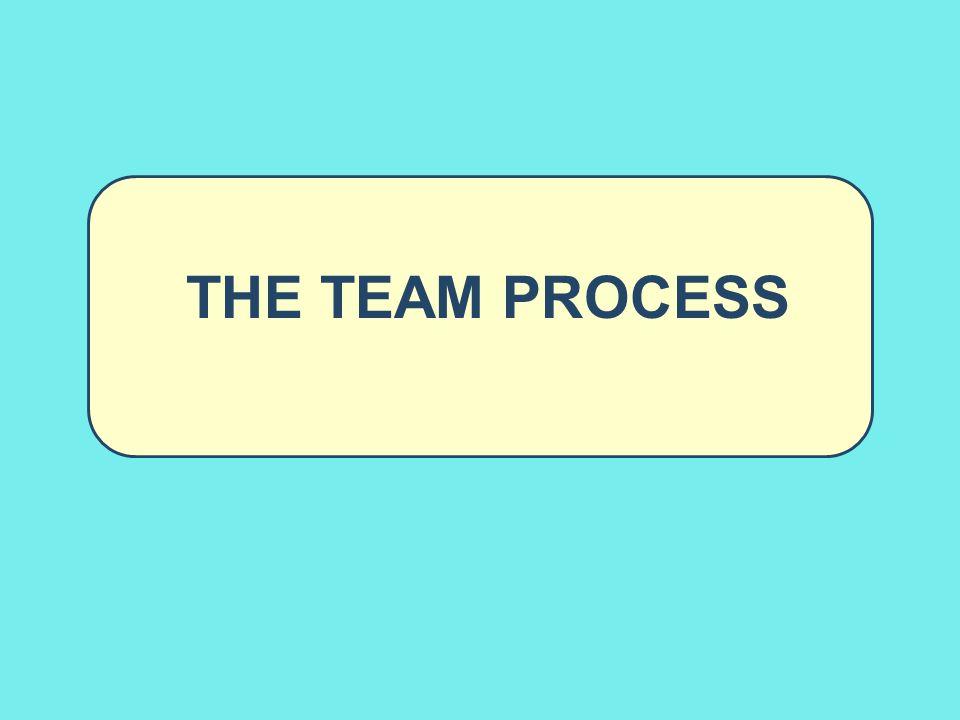 The Team Process