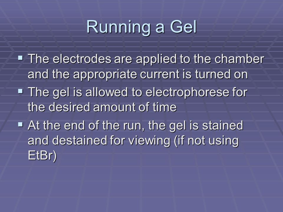 Running a Gel The electrodes are applied to the chamber and the appropriate current is turned on.