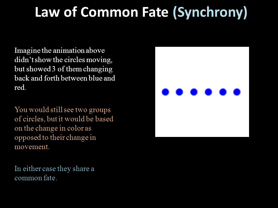 Law of Common Fate (Synchrony)