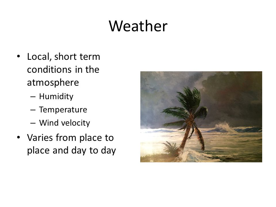 Weather Local, short term conditions in the atmosphere