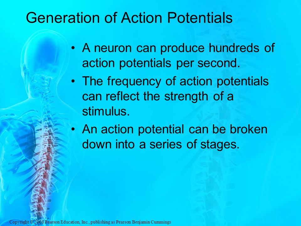 Generation of Action Potentials