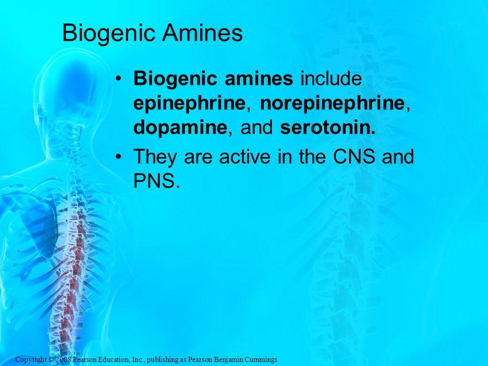 Biogenic Amines Biogenic amines include epinephrine, norepinephrine, dopamine, and serotonin.