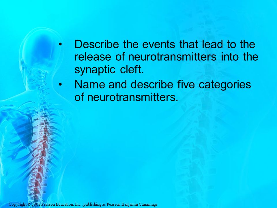 Describe the events that lead to the release of neurotransmitters into the synaptic cleft.