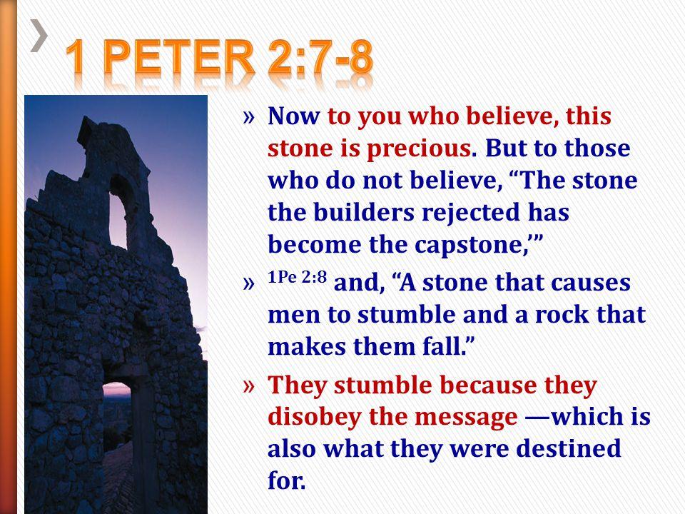 1 Peter 2:7-8