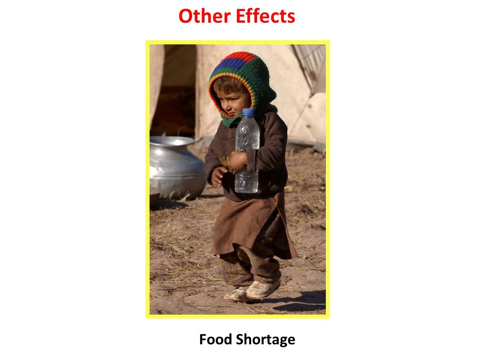 Other Effects Food Shortage