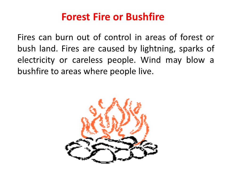 Forest Fire or Bushfire