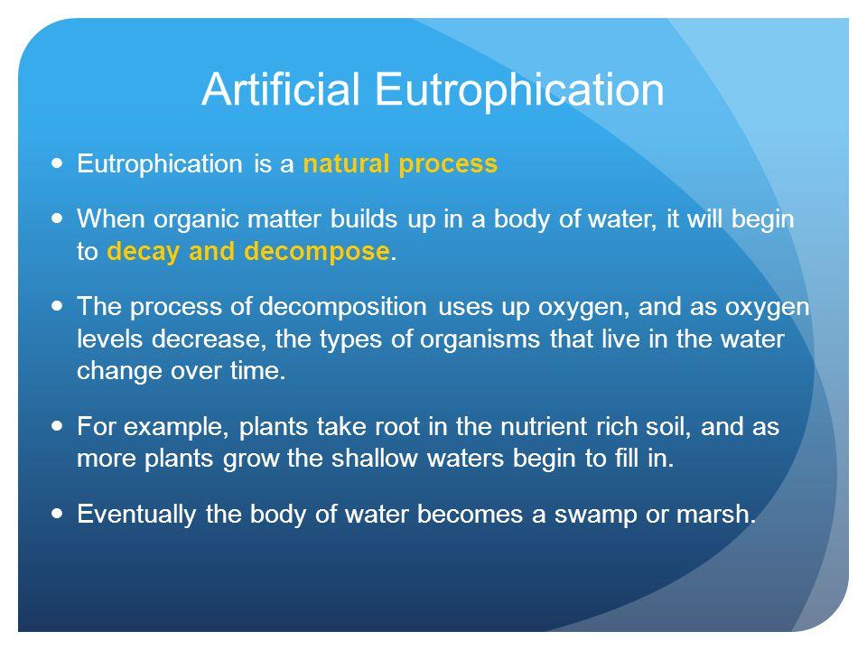 Artificial Eutrophication