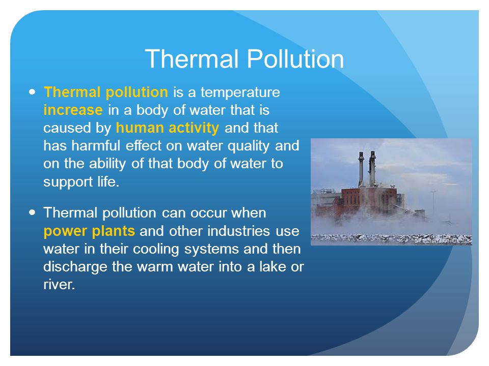 effect of water pollution on human life pdf