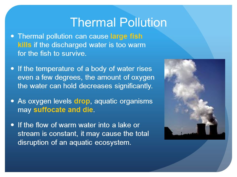 Thermal Pollution Thermal pollution can cause large fish kills if the discharged water is too warm for the fish to survive.