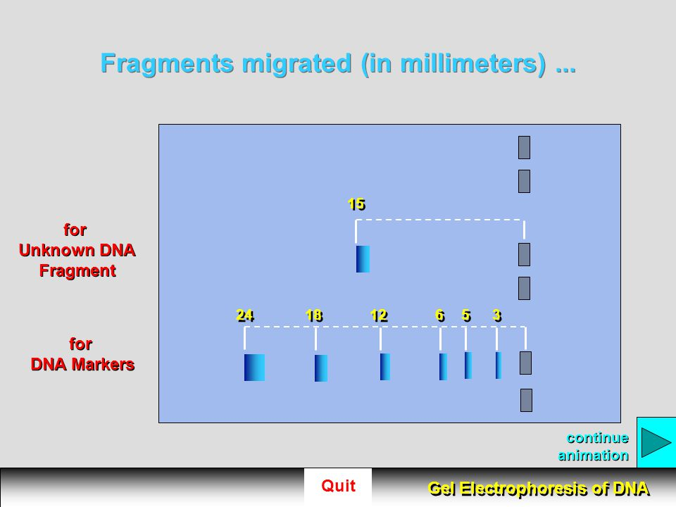 Fragments migrated (in millimeters) ...