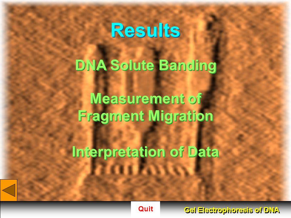 Measurement of Fragment Migration Interpretation of Data