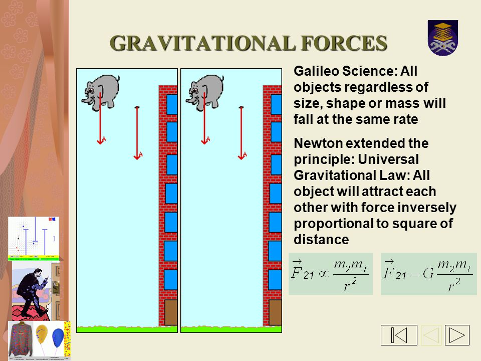 GRAVITATIONAL FORCES Galileo Science: All objects regardless of size, shape or mass will fall at the same rate.
