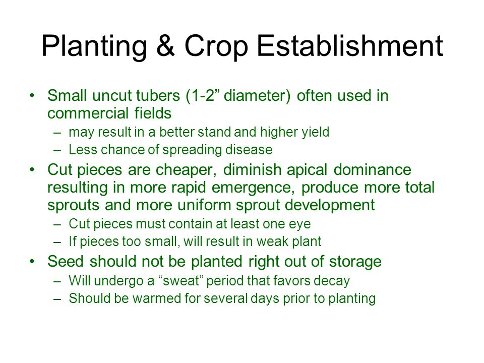 Planting & Crop Establishment