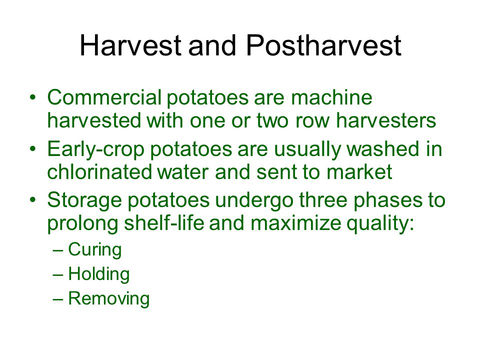 Harvest and Postharvest