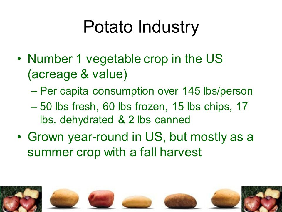 Potato Industry Number 1 vegetable crop in the US (acreage & value)