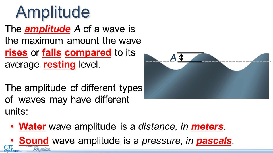 Amplitude The amplitude A of a wave is the maximum amount the wave rises or falls compared to its average resting level.