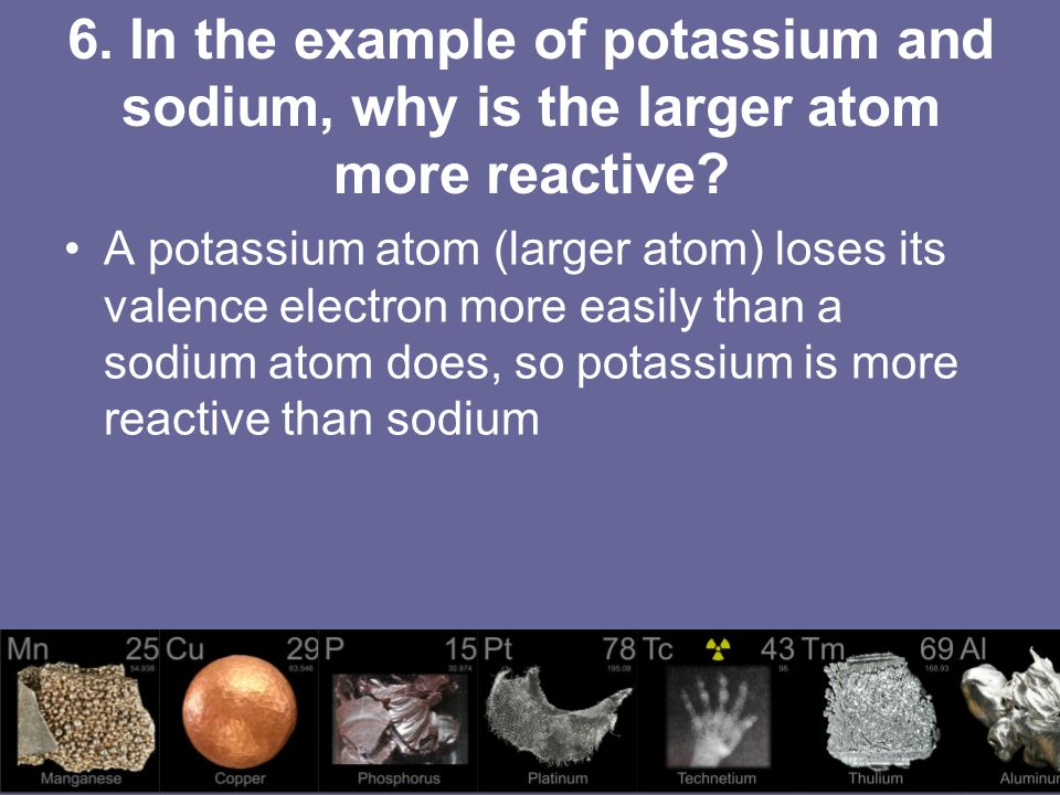 6. In the example of potassium and sodium, why is the larger atom more reactive
