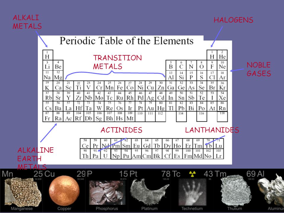 ALKALI METALS HALOGENS. TRANSITION METALS. NOBLE GASES.