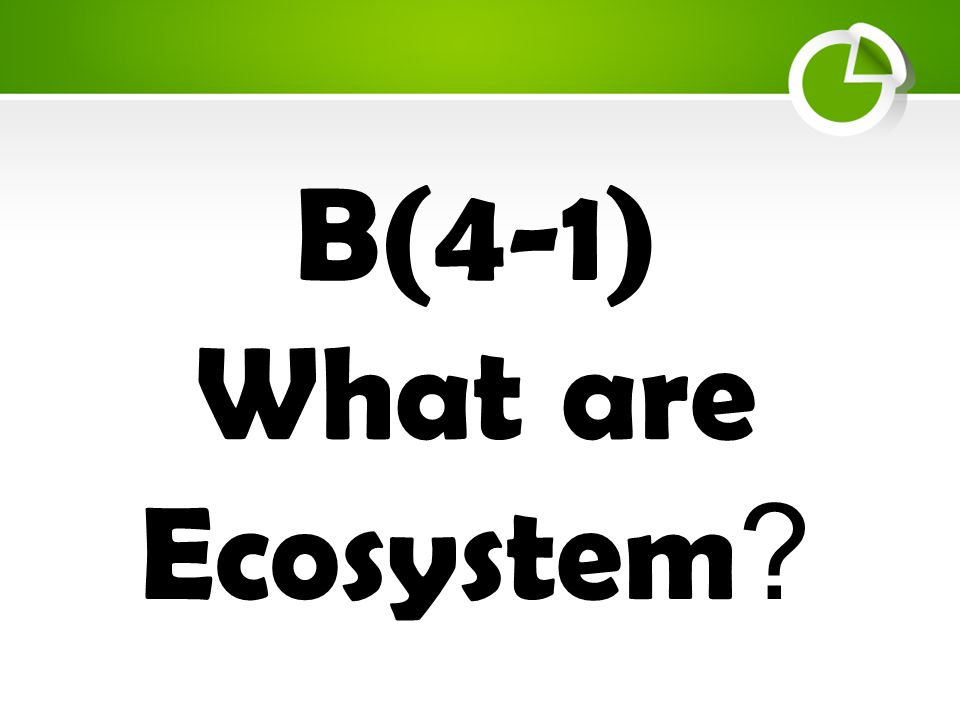 B(4-1) What are Ecosystem