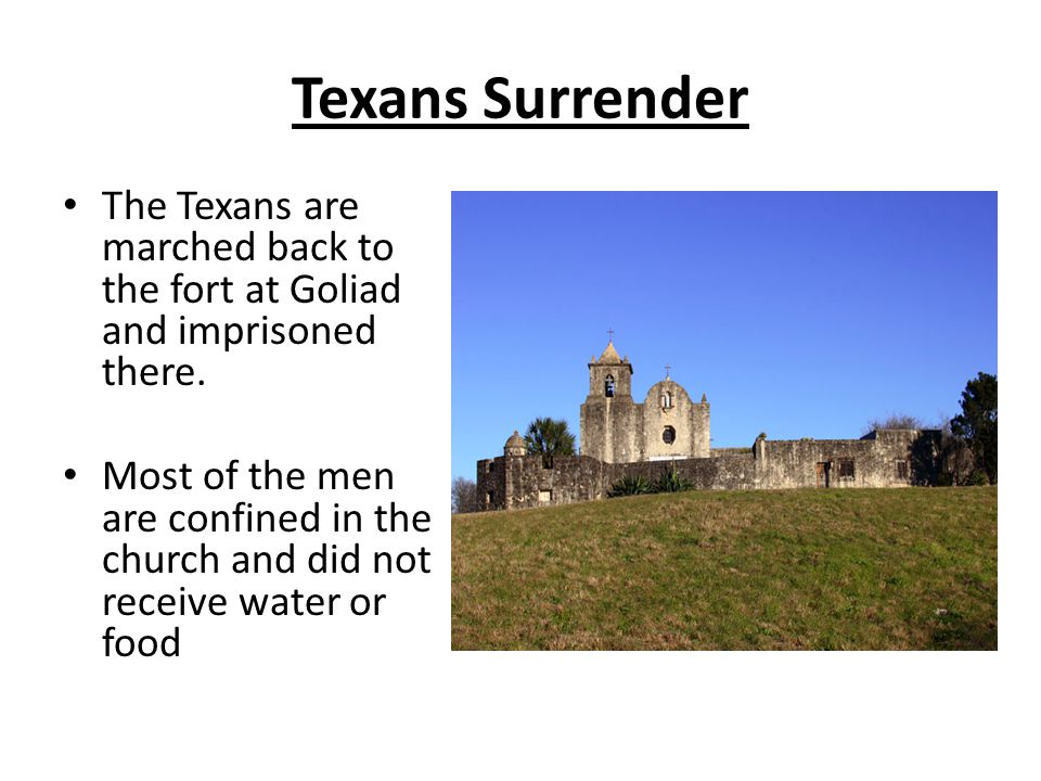 Texans Surrender The Texans are marched back to the fort at Goliad and imprisoned there.