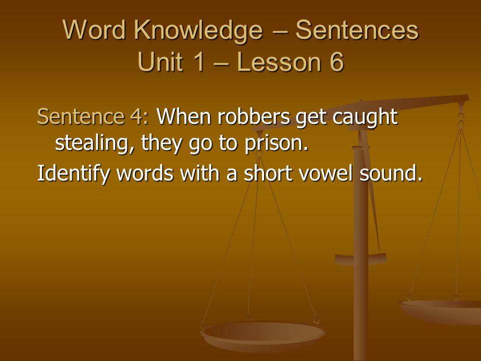 Word Knowledge – Sentences Unit 1 – Lesson 6