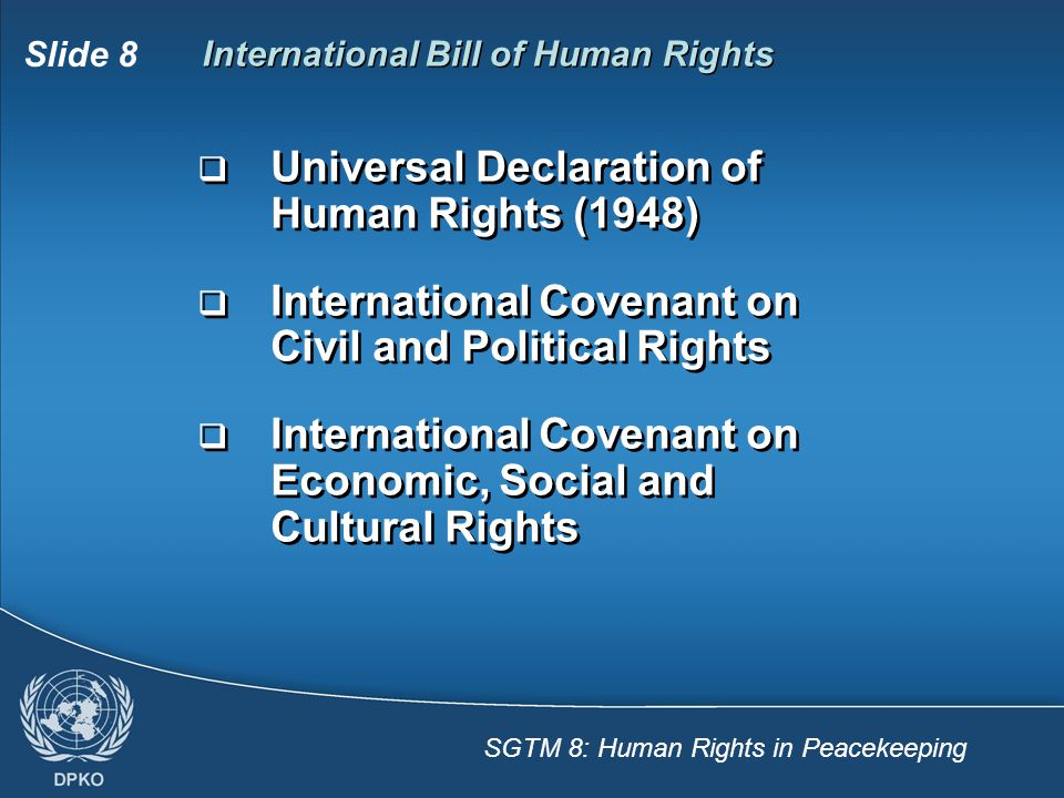 International Bill of Human Rights
