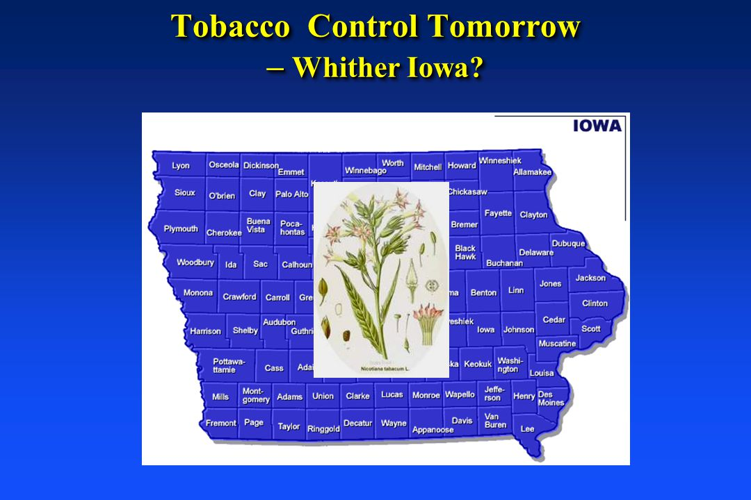 Tobacco Control Tomorrow – Whither Iowa