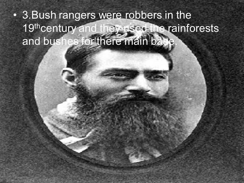 3.Bush rangers were robbers in the 19thcentury and they used the rainforests and bushes for there main base.