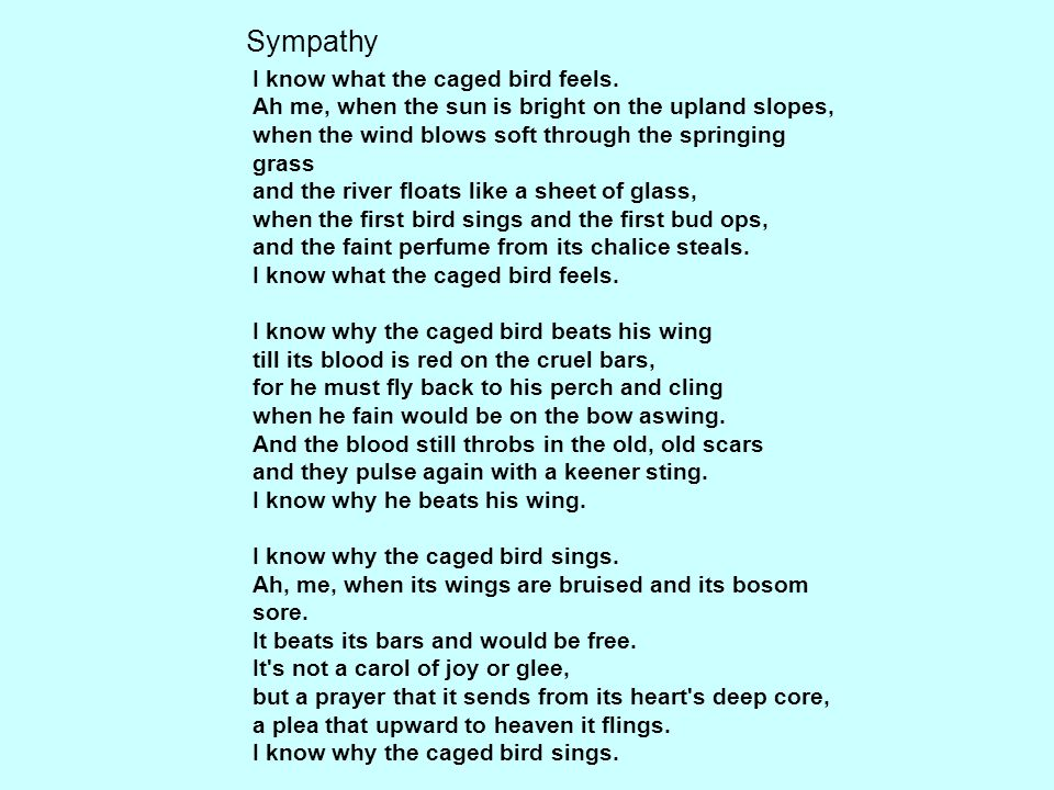 """behind sympathy by paul laurence dunbar I know what the caged bird feels paul laurence dunbar  according to the speaker in """"sympathy,"""" how does the caged bird feel."""