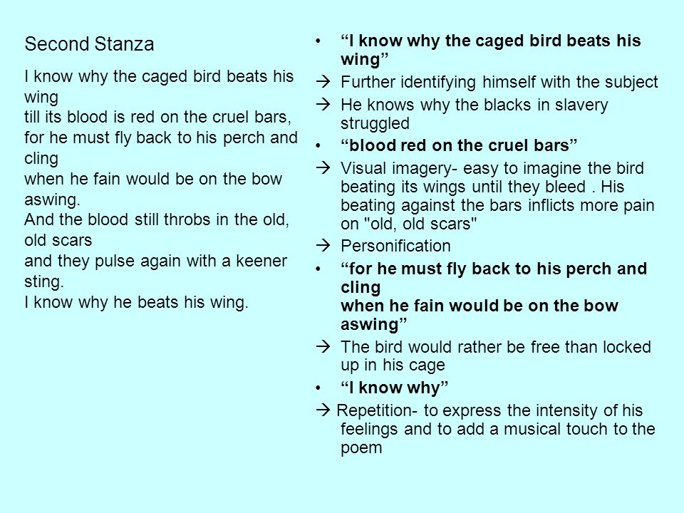 Second Stanza I know why the caged bird beats his wing