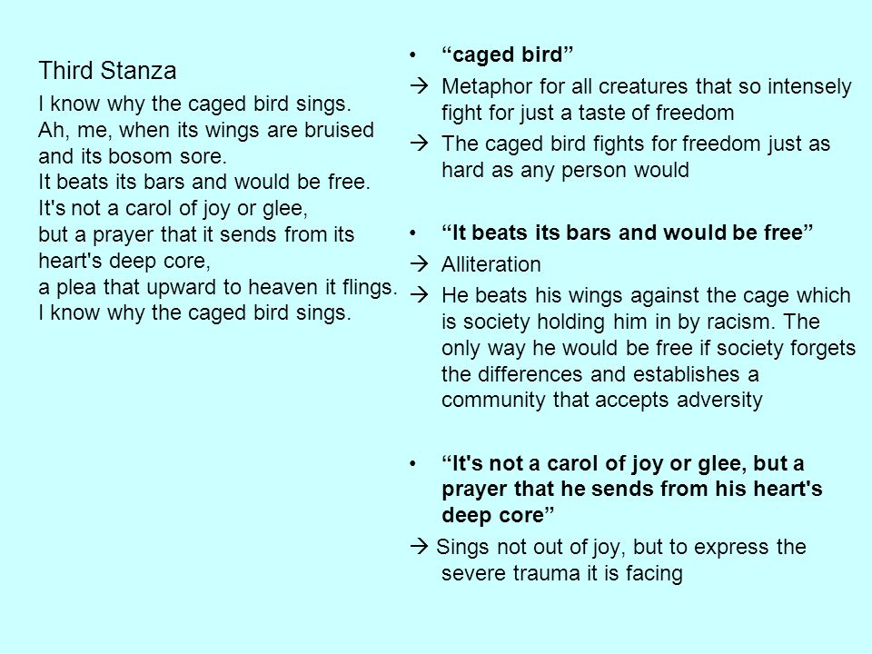Third Stanza caged bird
